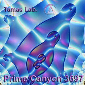 prime_canyon_3697_1