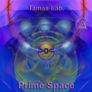 Prime Space by Tamas Lab.