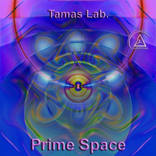 Prime Space by Tamas Lab.